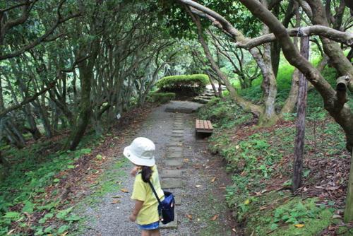 比叡ガーデンミュージアム こもれびの庭